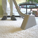 Contempo Carpet and Area Rug Cleaning